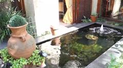 Koi pond in a modern garden Stock Footage