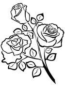 Black outline of rose flowers - stock illustration