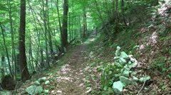 4k Pile of stones hiking cult Austria alps forest Stock Footage