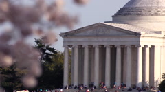 Thomas Jefferson Memorial & Cherry Blossoms Stock Footage
