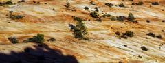 Detail of sedimentary sandstone layers Stock Photos