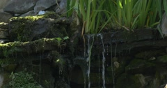 Little Flows From The Waterfall, Through The Stones and Grass' Roots - stock footage