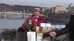 Street artist on the charles bridge Stock Footage