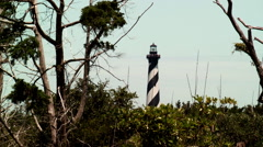 Cape Hatteras lighthouse coast trees shrubs Stock Footage