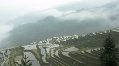 Misty Terraced Rice Field at Early Morning Stock Footage