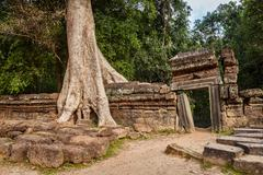 Travel Cambodia concept background - ancient ruins with tree roots, Ta Prohm  - stock photo