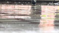 A closeup shot of heavy rain on road. Heavy rain on marble surface background Stock Footage