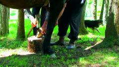 Man cutting and triming a horse hooves - stock footage