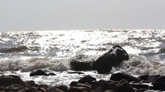 Waves crashing against stones and sunlight reflected  in water Stock Footage