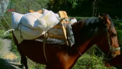 Man leading a horse with a sacks with flour on his back Stock Footage