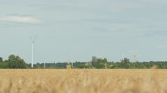 Ripe cornfield waving in a hot summer wind with a wind farm in background Stock Footage
