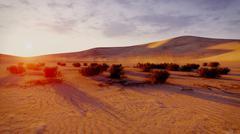 Sunrise or sunset in a desert Stock Illustration
