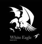 White eagle, Hawk, Falcon. WHITE TRIBAL EAGLE Piirros