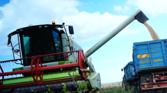 Concept Of Mechanized Agriculture.Combine Harvester Gathers The Wheat Crop Stock Footage
