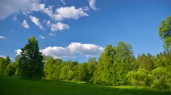 Summer nature landscape, field, forest, sky, clouds, time-lapse. - stock footage