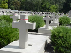 Polish military cemetery of the period of 1918-1920. Stock Footage