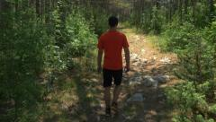Rear view of young adult walking on forest path - stock footage