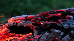 Beautiful log smoldering in fire Stock Footage
