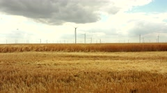 Modern wind turbines generating sustainable energy in a field with wheat Stock Footage