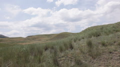 Running among the wild grasses on hillsides Stock Footage