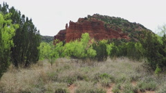 Green Foliage And Rocky Hill- Caprock Canyon State Park Stock Footage
