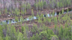 Valley taiga river Stock Footage