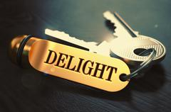 Delight Concept. Keys with Golden Keyring Stock Illustration