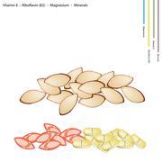Stock Illustration of Almonds with Vitamin E, Riboflavin and Minerals
