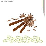 Star Anise and Cinnamon Sticks with Minerals - stock illustration