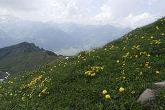 summer over gree mountains of bregenz in austria - stock photo