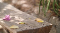 Flower Falling on a Wooden Bench Stock Footage