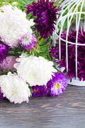 mix of aster flowers - stock photo