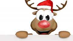 Christmas Reindeer Happy Stock Footage