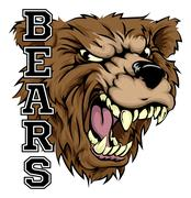 Bear Mascot Stock Illustration