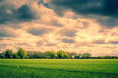 Dark clouds over a field Stock Photos