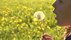 Child and the dandelion  Stock Footage