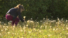 Child and the dandelion field Stock Footage