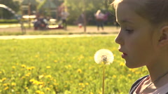 child and the dandelion  - stock footage