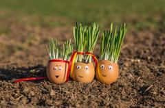 Happy egg family on the soil, Easter Stock Photos