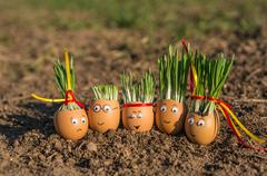 Happy egg family on the soil, Easter Stock Photos