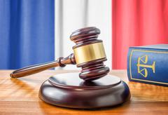 A gavel and a law book - France Stock Photos