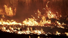 Bushfire at Night Stock Footage