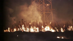 Wildfire at Night Stock Footage