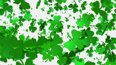Clover in green on white Stock Footage