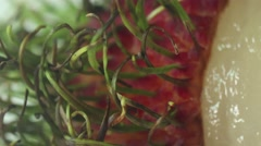 EXTREME MACRO CLOSE UP of ASIAN RAMBUTAN FRUIT: Stock Footage