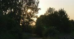 Orange, Yellow Sunset Behind Swaying Trees' Silhouettes, Bushes, Railway - stock footage