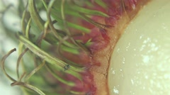 MACRO Extreme Close Up of Rambutan Rind Stock Footage