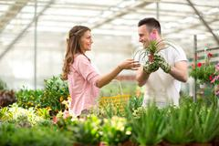 Seller recommend flowers in greenhouses - stock photo