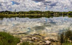 Florida Everglades Lake Stock Photos