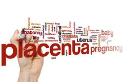 Placenta word cloud - stock photo